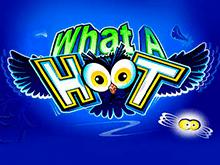 Играйте онлайн прямо сейчас в слот What A Hoot
