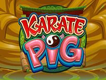 Каратэ Кабан – игровой аппарат производства Microgaming